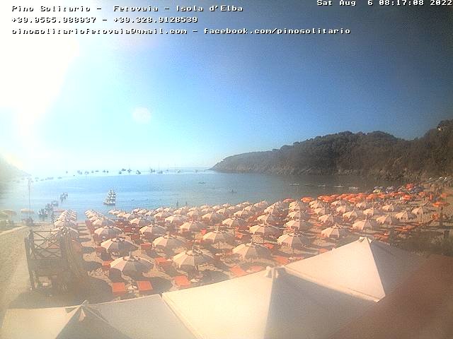 Webcam Fetovaia